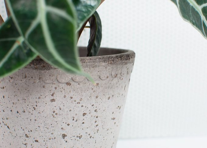 Helena Handmade Flowerpot Grey Color ⌀ 14 cm from Bergs Potter - Closeup
