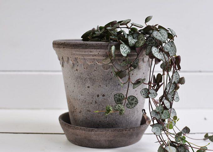 "Handgjord grå kruka ⌀ 14 cm ""Köpenhamn""   Bergs Potter   Willekulla Lantlig Inredning   framsida"